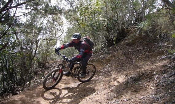 Pajarito Trail Tour